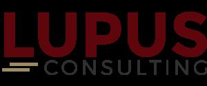 Lupus Consulting SAP